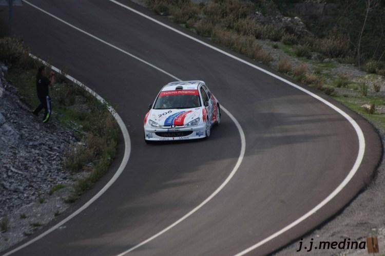 Pedro Cordero-Francisco Cruz, Peugeot 206 Maxi