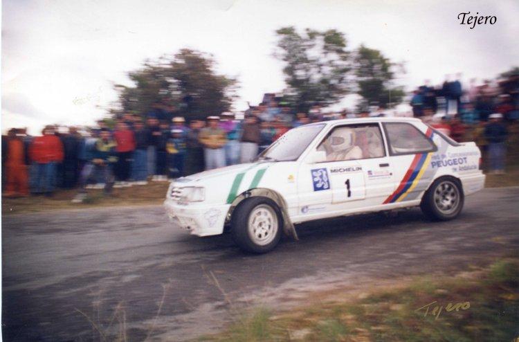 Juan Antonio Tobaruela, Peugeot 309 GTI 16v