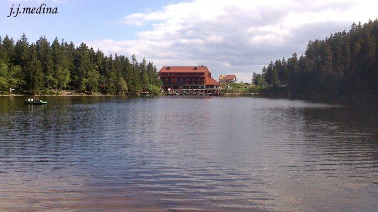 Lago en la Selva Negra