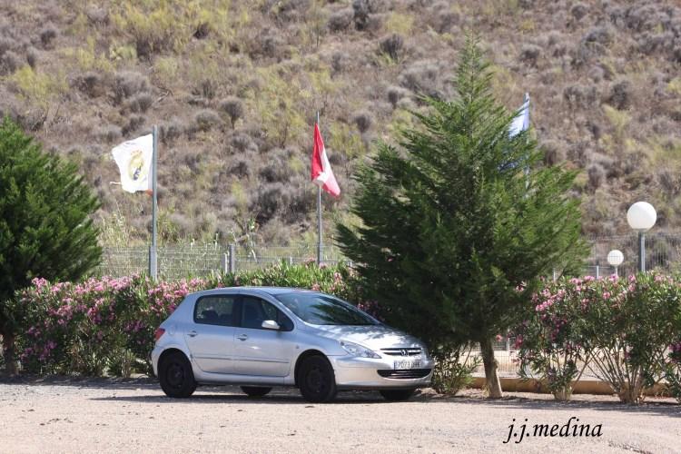Peugeot 307 HDI en el tramo de Lucainena