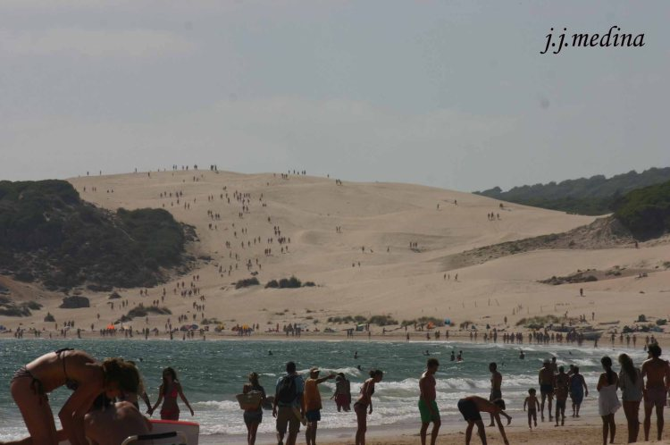 Duna de la Playa de Bolonia, Cádiz